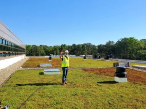 Maintenance Worker on Green Roof in Fall 1