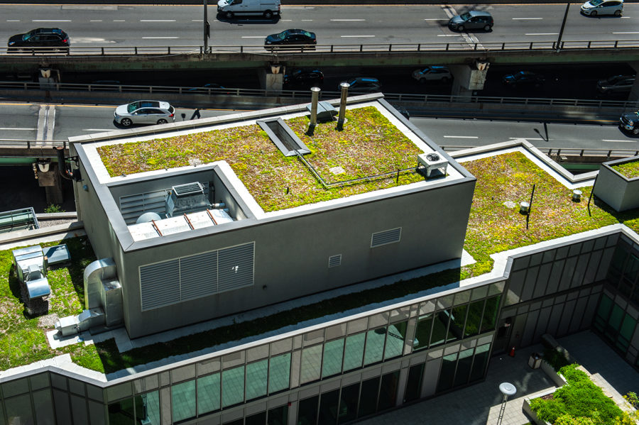Green infrastructure offers climate resilience in urban environments.