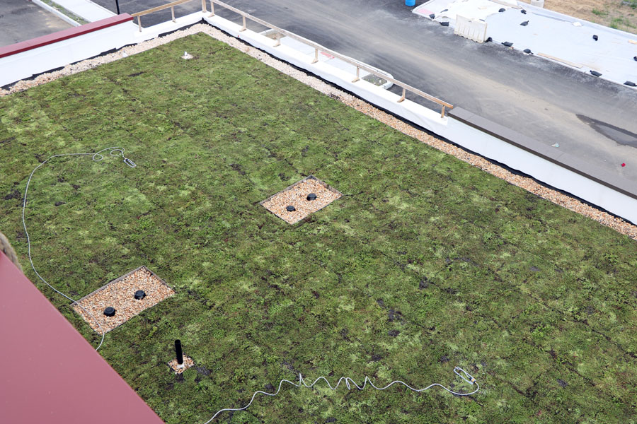 Birds eye view of the vegetated roof on Mastery Cramer Hill Elementary.